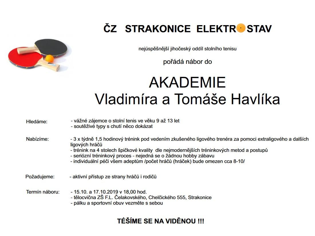 Další nábor do akademie Vladimíra a Tomáše Havlíkových
